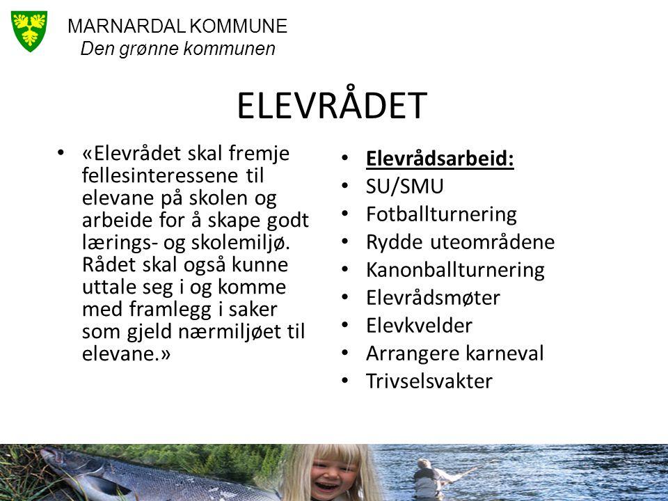 ELEVRÅDET