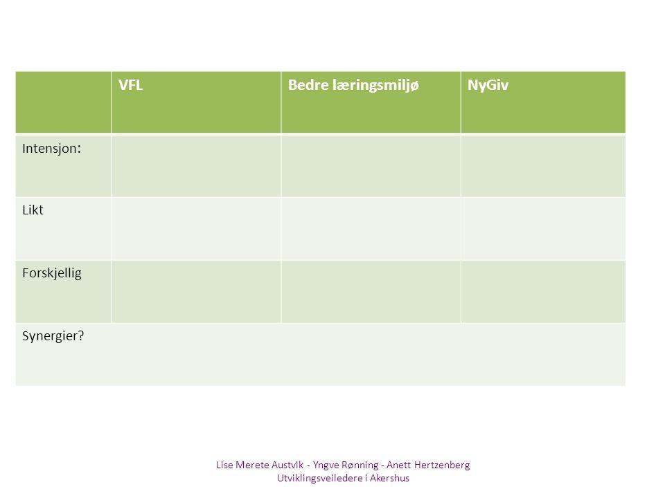 VFL Bedre læringsmiljø NyGiv Intensjon: Likt Forskjellig Synergier