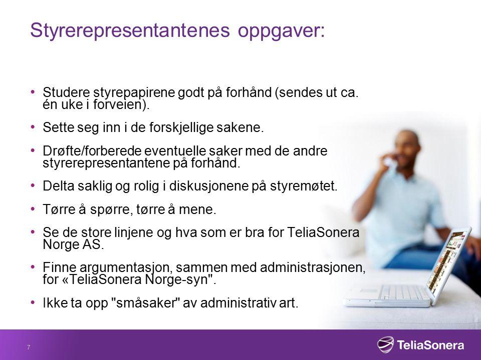 Styrerepresentantenes oppgaver: