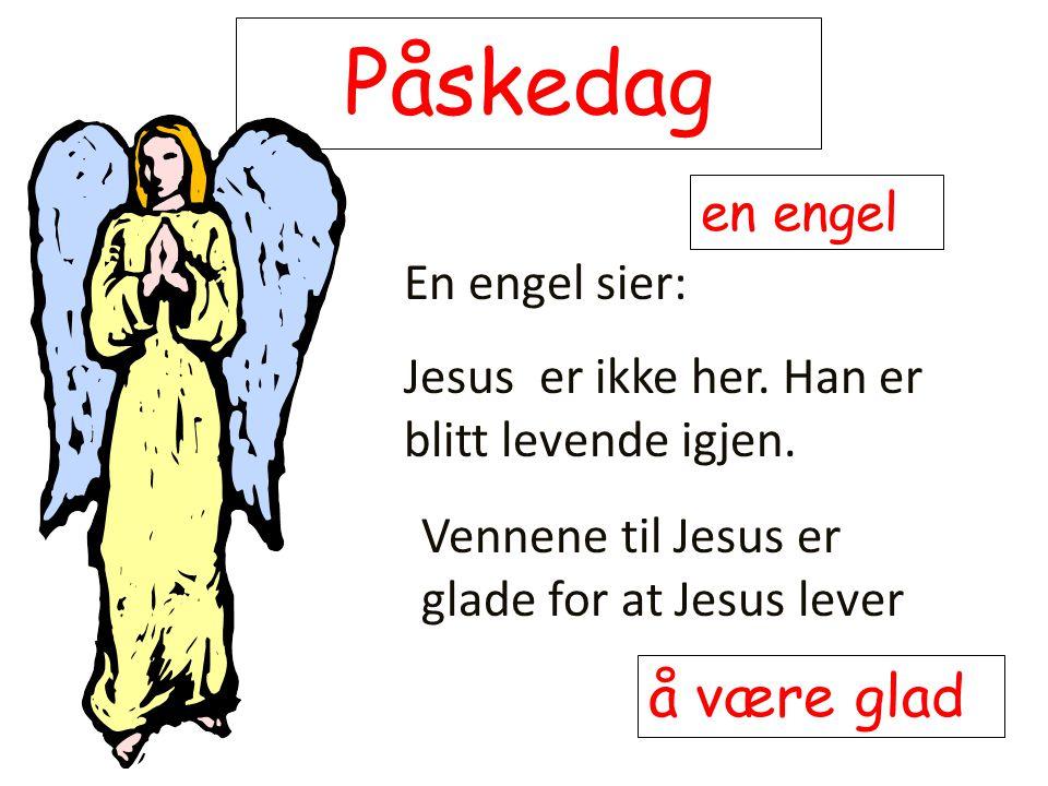 Påskedag å være glad en engel En engel sier: