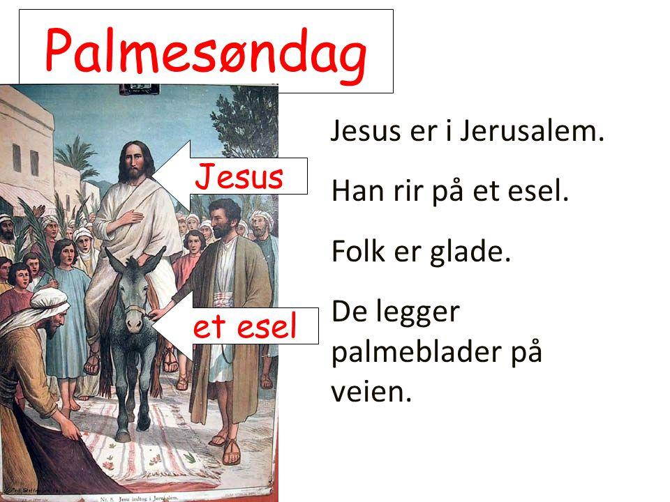 Palmesøndag Jesus er i Jerusalem. Han rir på et esel. Jesus