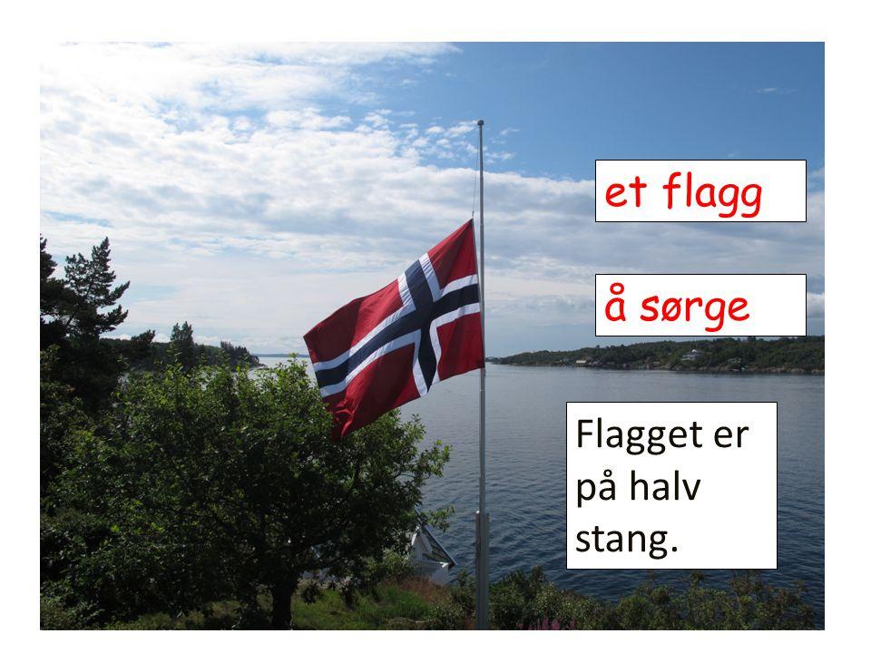et flagg å sørge Flagget er på halv stang.
