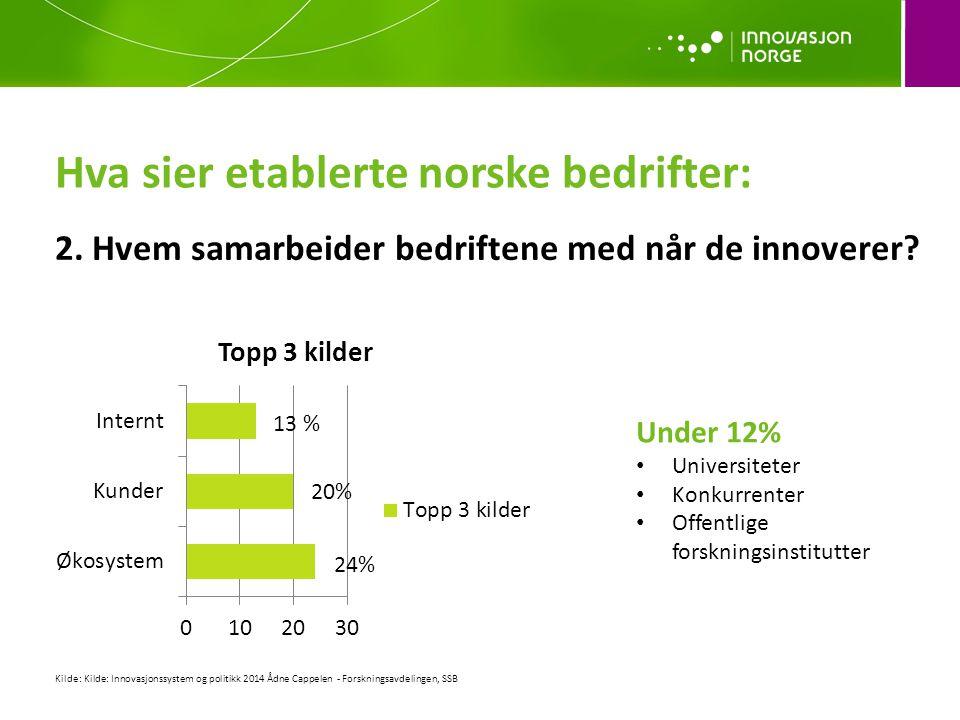 Hva sier etablerte norske bedrifter: