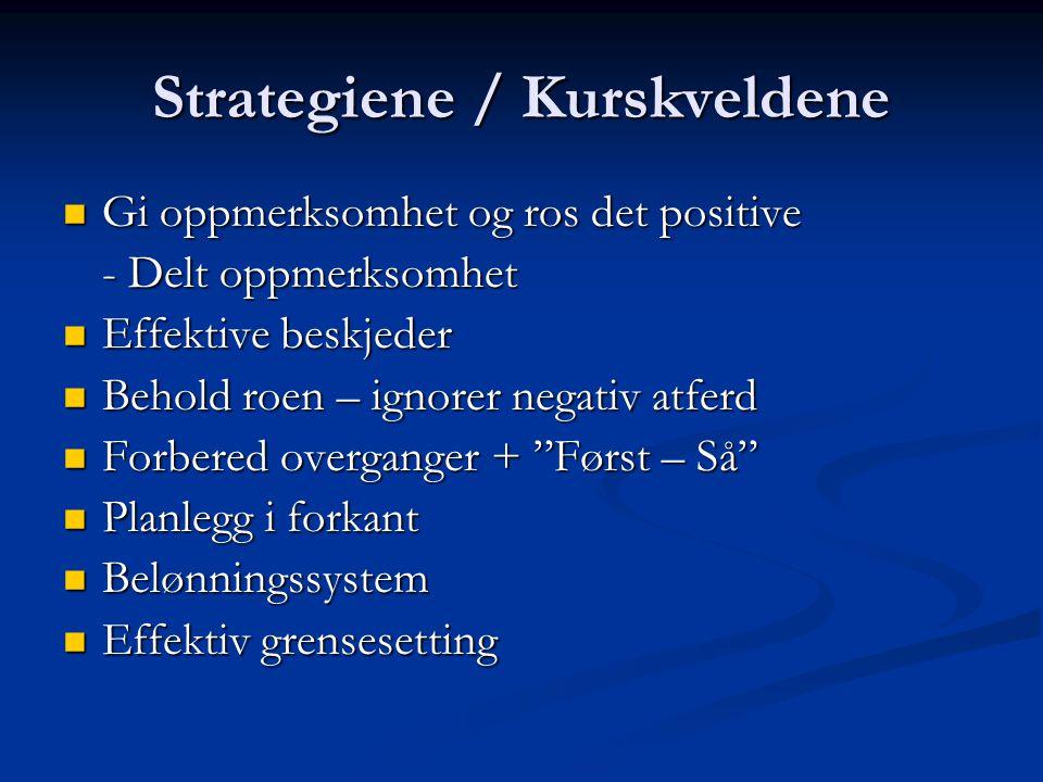 Strategiene / Kurskveldene