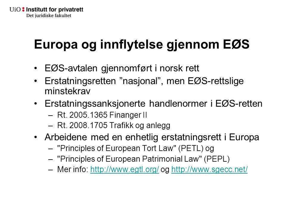 Europa og innflytelse gjennom EØS