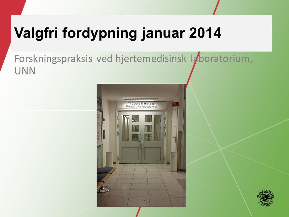 Valgfri fordypning januar 2014