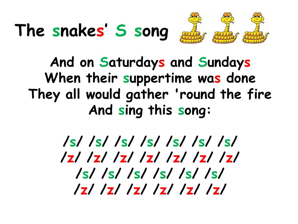 The snakes' S song