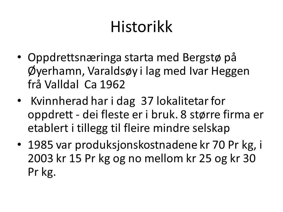 Historikk Oppdrettsnæringa starta med Bergstø på Øyerhamn, Varaldsøy i lag med Ivar Heggen frå Valldal Ca 1962.