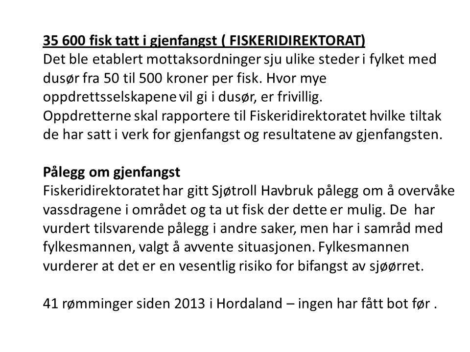 35 600 fisk tatt i gjenfangst ( FISKERIDIREKTORAT)