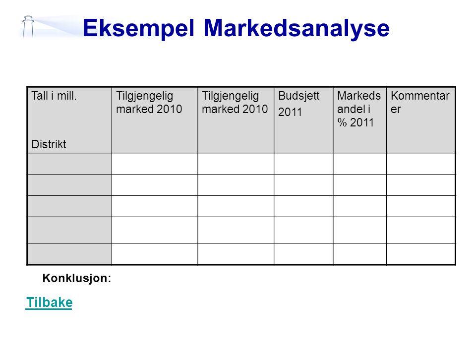 Eksempel Markedsanalyse