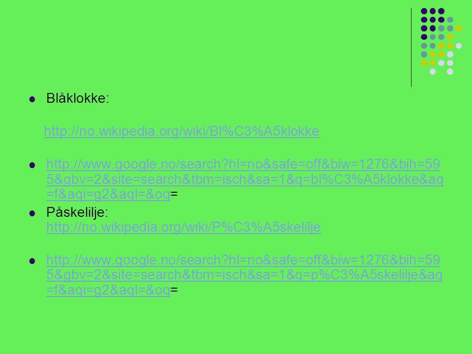 Blåklokke: http://no.wikipedia.org/wiki/Bl%C3%A5klokke.