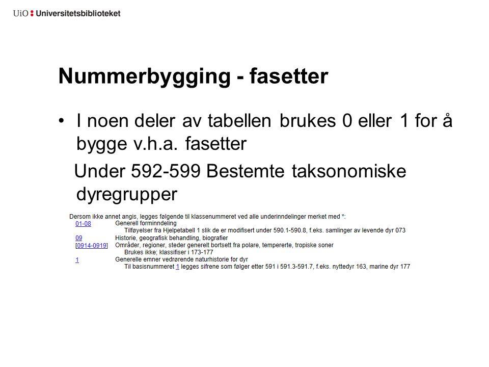 Nummerbygging - fasetter