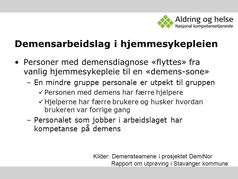 Demensarbeidslag i hjemmesykepleien