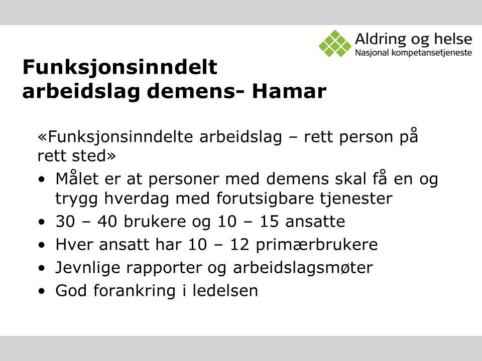 Funksjonsinndelt arbeidslag demens- Hamar
