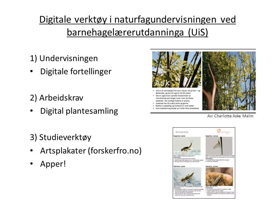 Digitale verktøy i naturfagundervisningen ved barnehagelærerutdanninga (UiS)