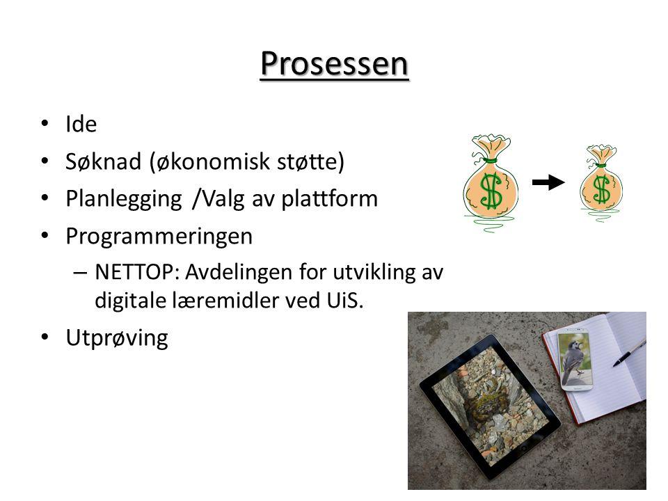 Prosessen Ide Søknad (økonomisk støtte) Planlegging /Valg av plattform