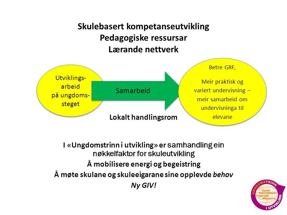 Skulebasert kompetanseutvikling Pedagogiske ressursar Lærande nettverk