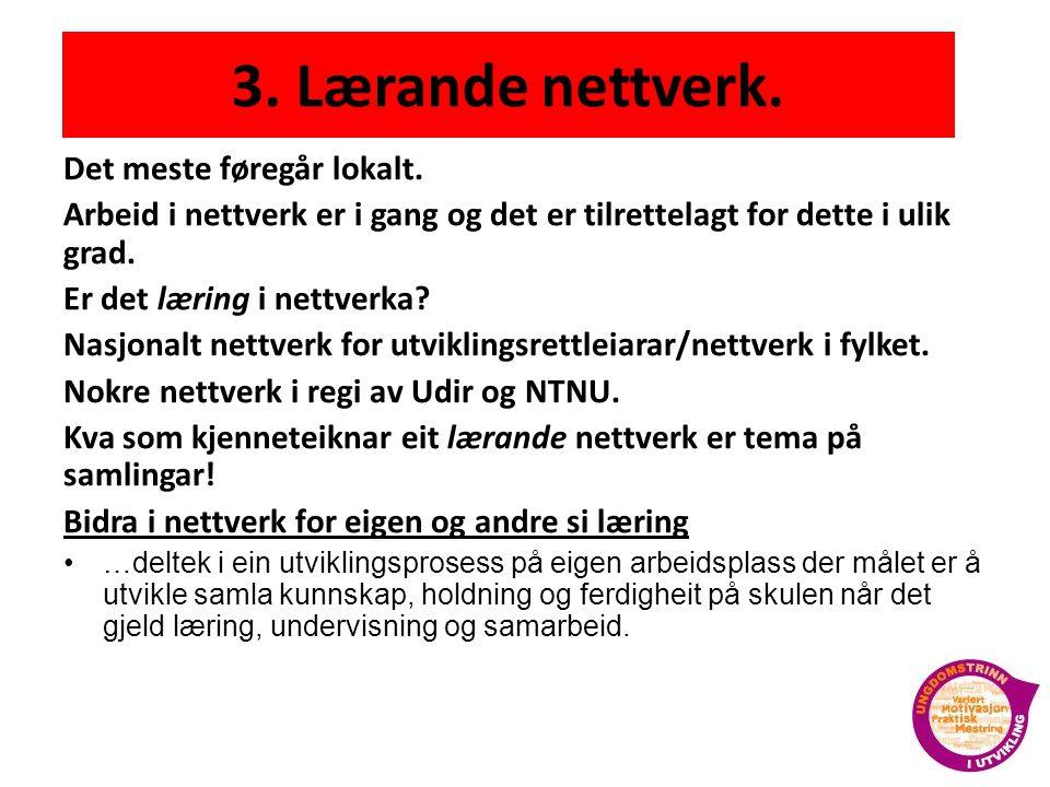 3. Lærande nettverk. Det meste føregår lokalt.