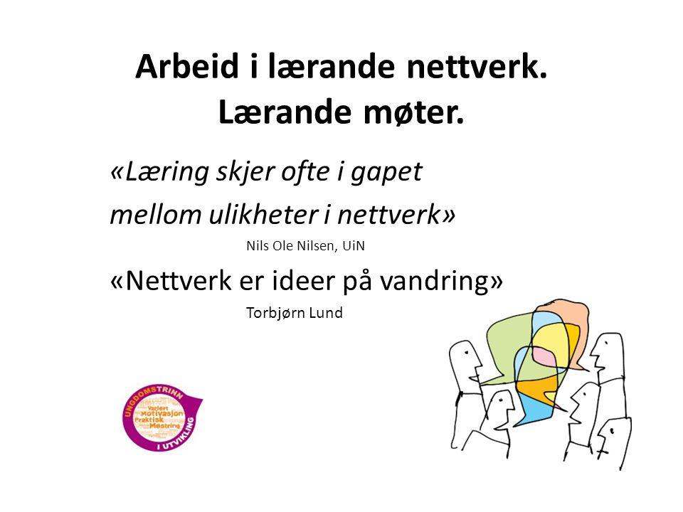 Arbeid i lærande nettverk. Lærande møter.