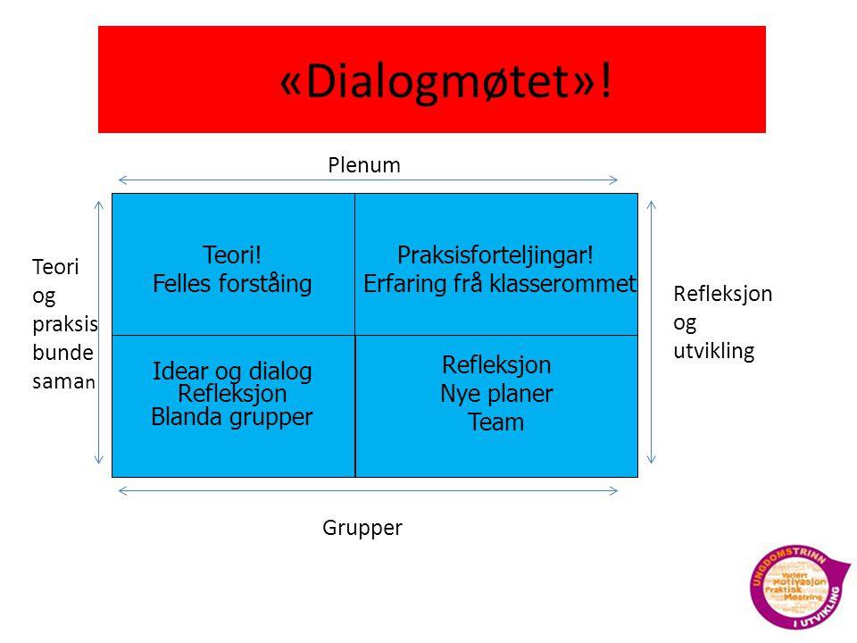 «Dialogmøtet»! Teori! Felles forståing Praksisforteljingar!