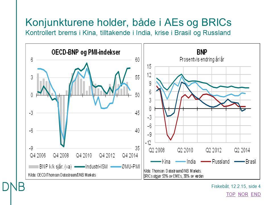 Konjunkturene holder, både i AEs og BRICs Kontrollert brems i Kina, tilltakende i India, krise i Brasil og Russland