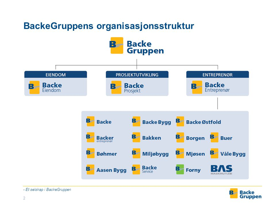 BackeGruppens organisasjonsstruktur