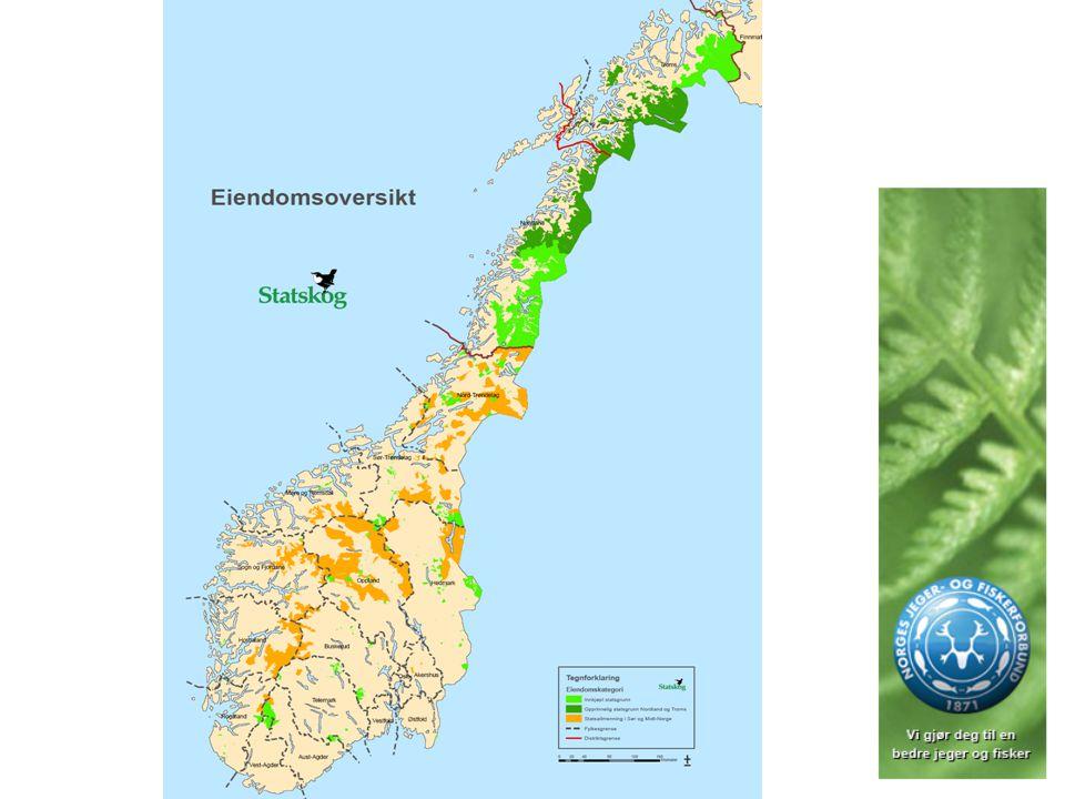 Statsgrunn i Norge