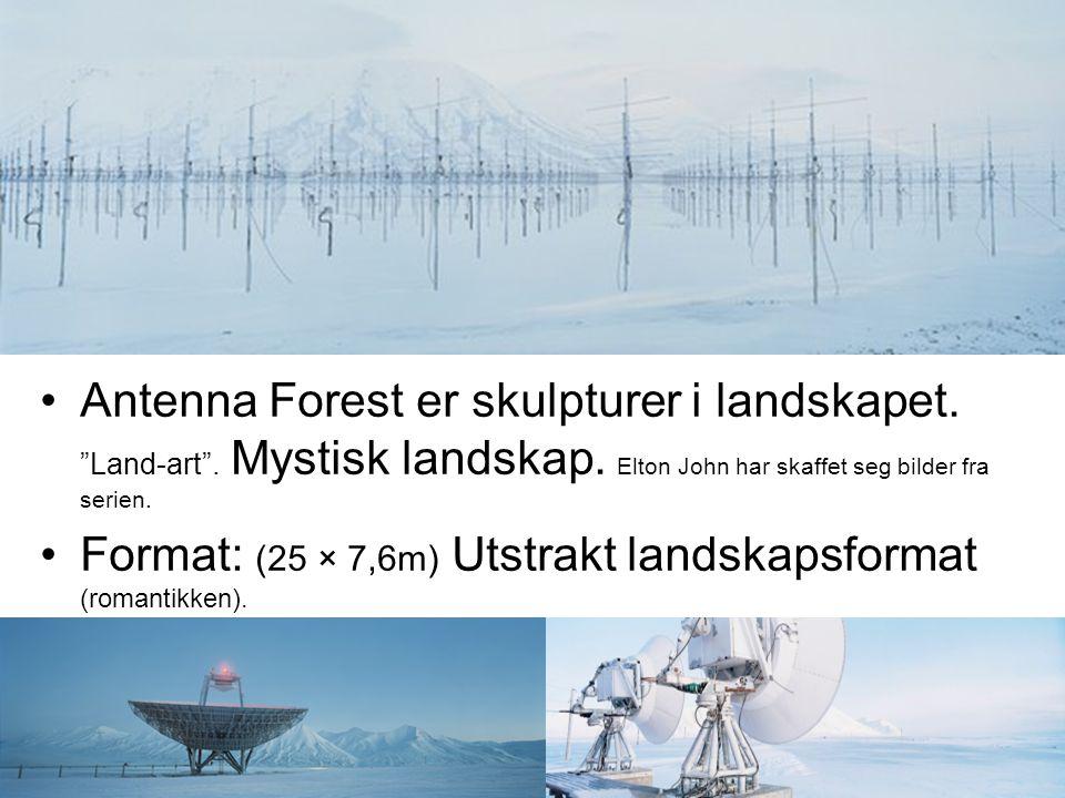 Antenna Forest er skulpturer i landskapet. Land-art . Mystisk landskap. Elton John har skaffet seg bilder fra serien.