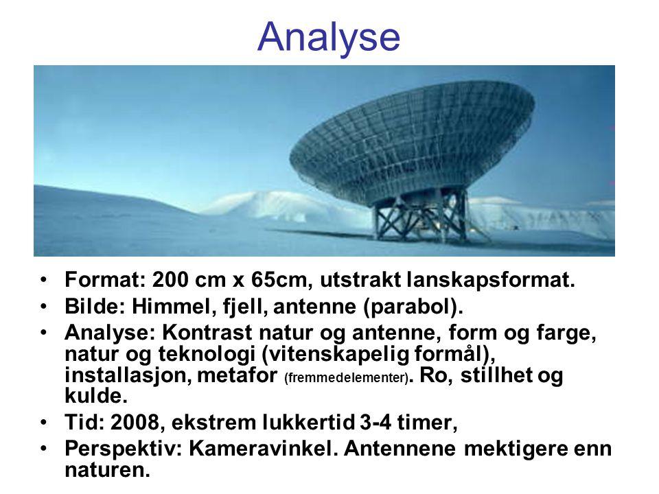 Analyse Format: 200 cm x 65cm, utstrakt lanskapsformat.