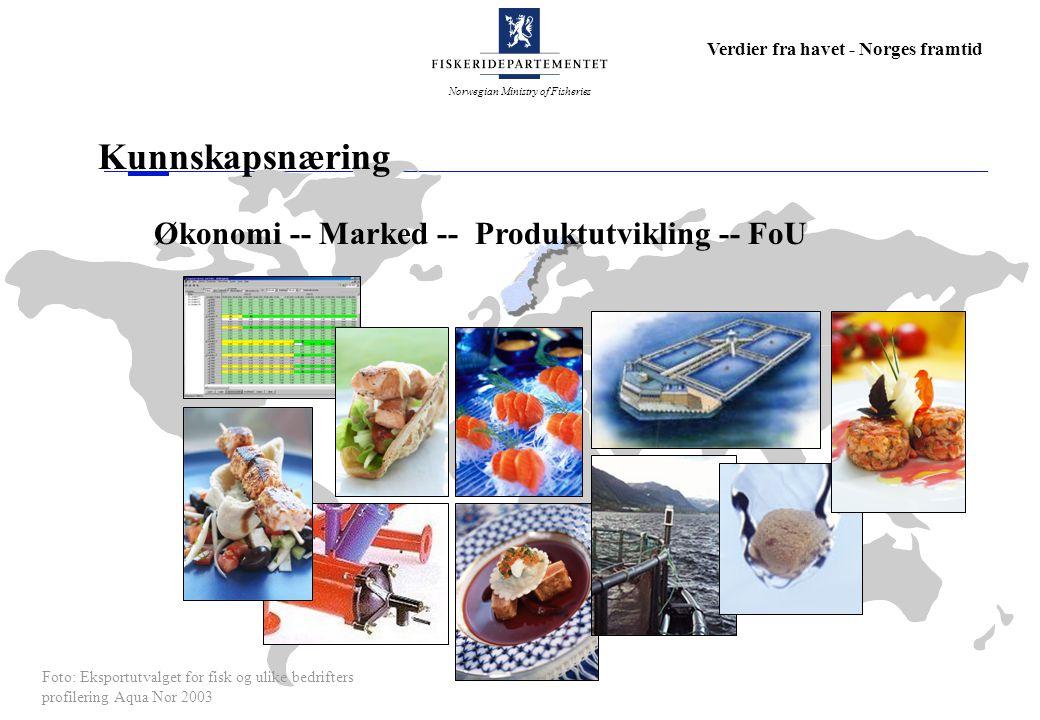 Kunnskapsnæring Økonomi -- Marked -- Produktutvikling -- FoU