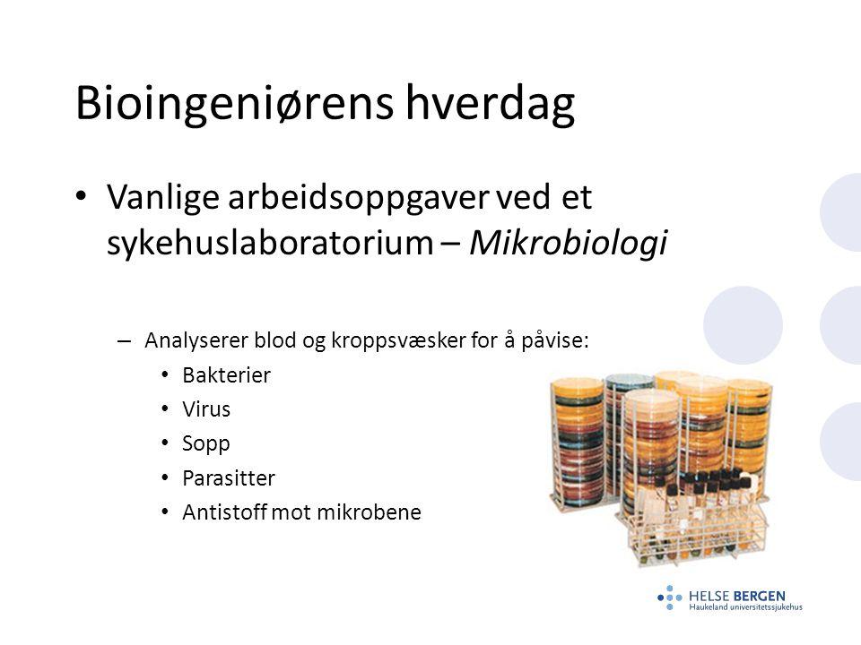Bioingeniørens hverdag