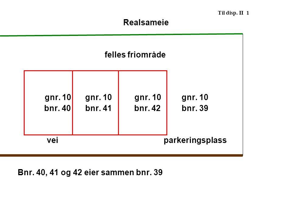 Til disp. II 1 Realsameie. felles friområde. gnr. 10 gnr. 10 gnr. 10 gnr. 10. bnr. 40 bnr. 41 bnr. 42 bnr. 39.