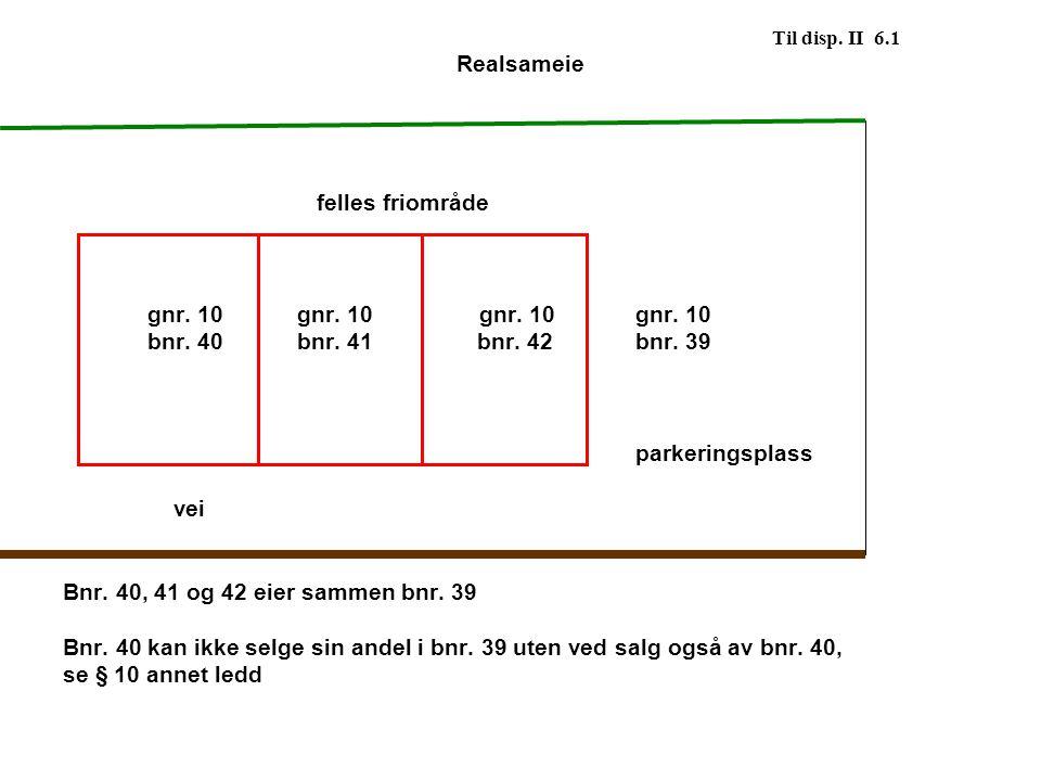 Til disp. II 6.1 Realsameie. felles friområde. gnr. 10 gnr. 10 gnr. 10 gnr. 10.
