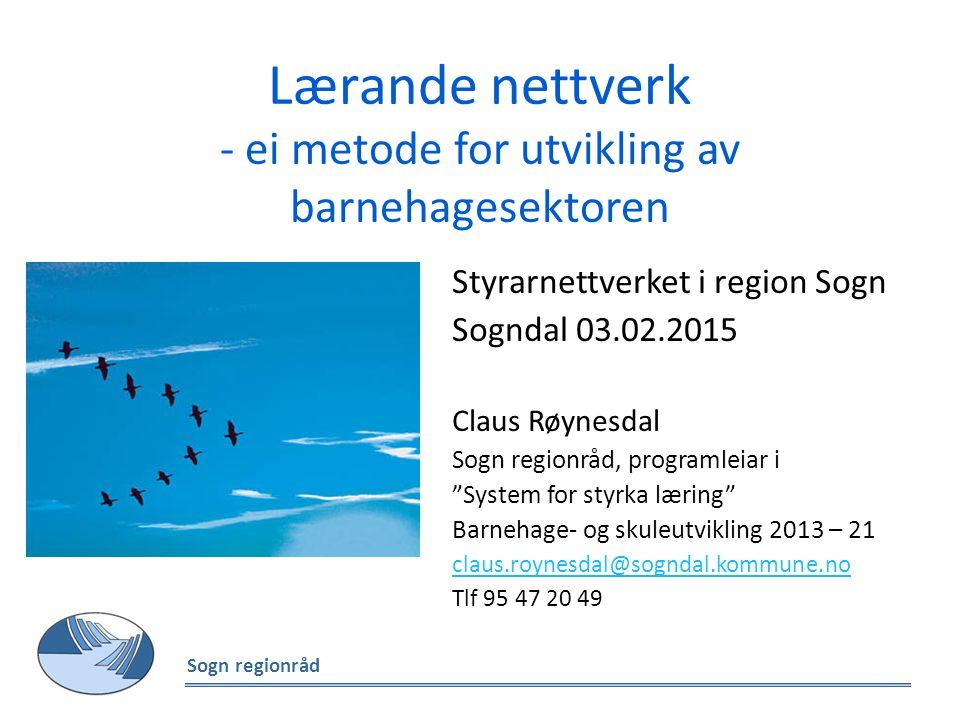 Lærande nettverk - ei metode for utvikling av barnehagesektoren