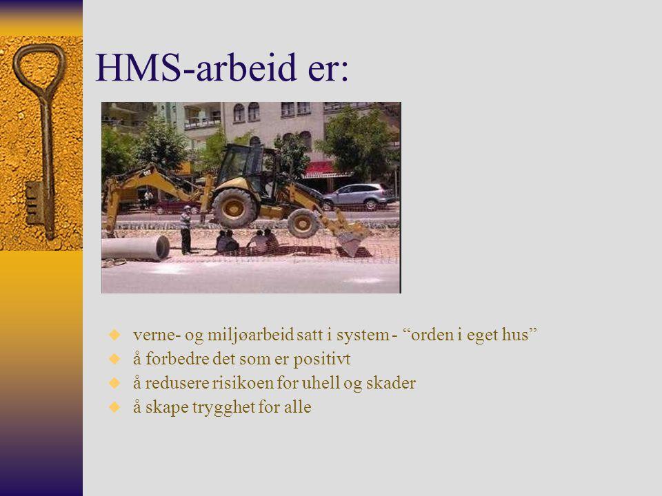 HMS-arbeid er: Intern-kontrollforskriften.