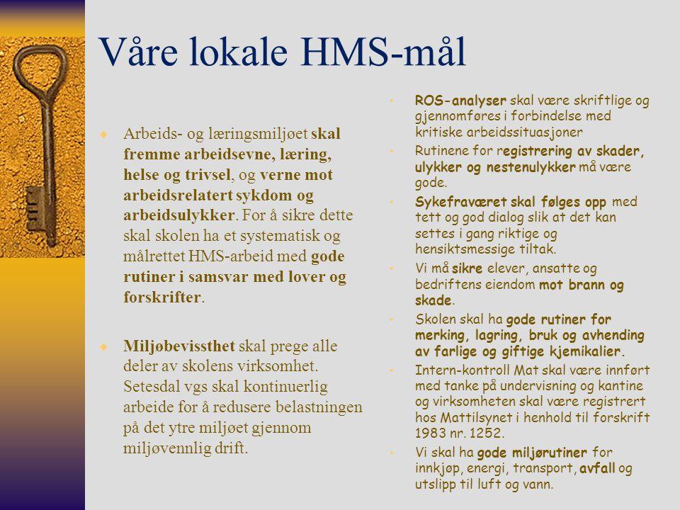 Våre lokale HMS-mål ROS-analyser skal være skriftlige og gjennomføres i forbindelse med kritiske arbeidssituasjoner.