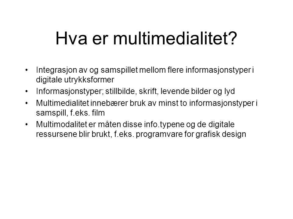 Hva er multimedialitet