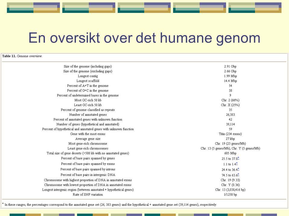 En oversikt over det humane genom
