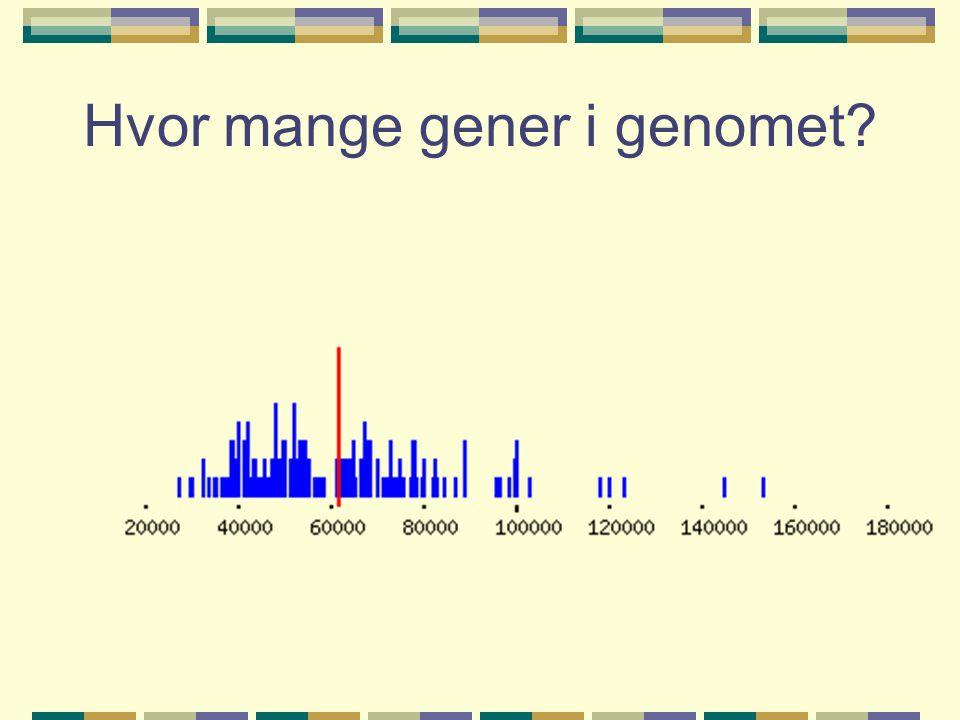 Hvor mange gener i genomet