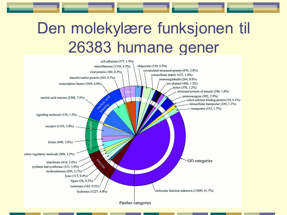 Den molekylære funksjonen til 26383 humane gener