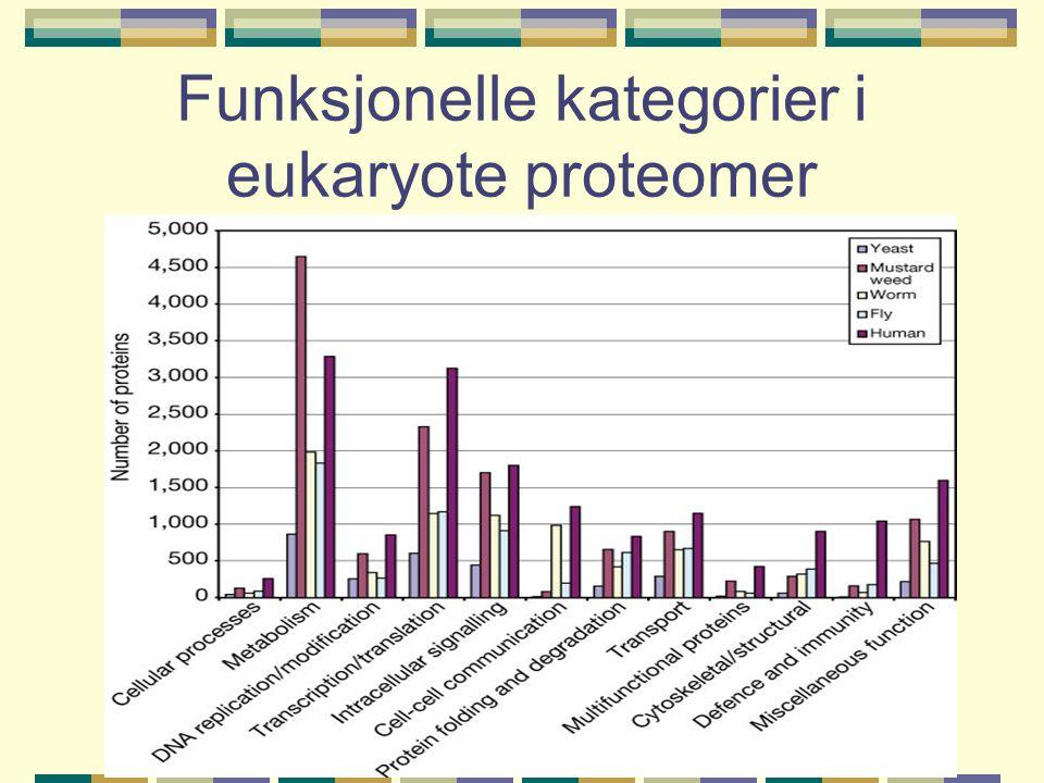 Funksjonelle kategorier i eukaryote proteomer