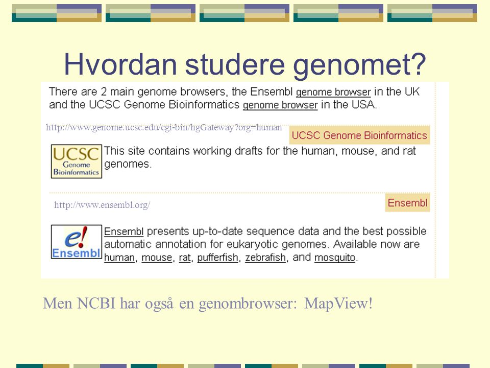 Hvordan studere genomet