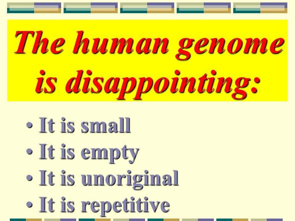 The human genome is disappointing: