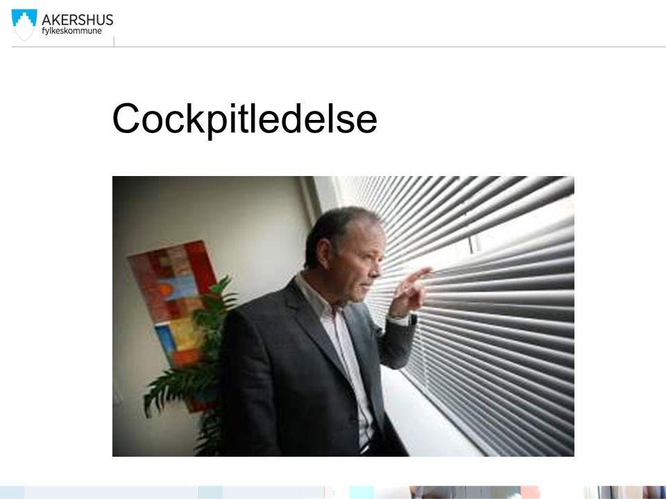Cockpitledelse