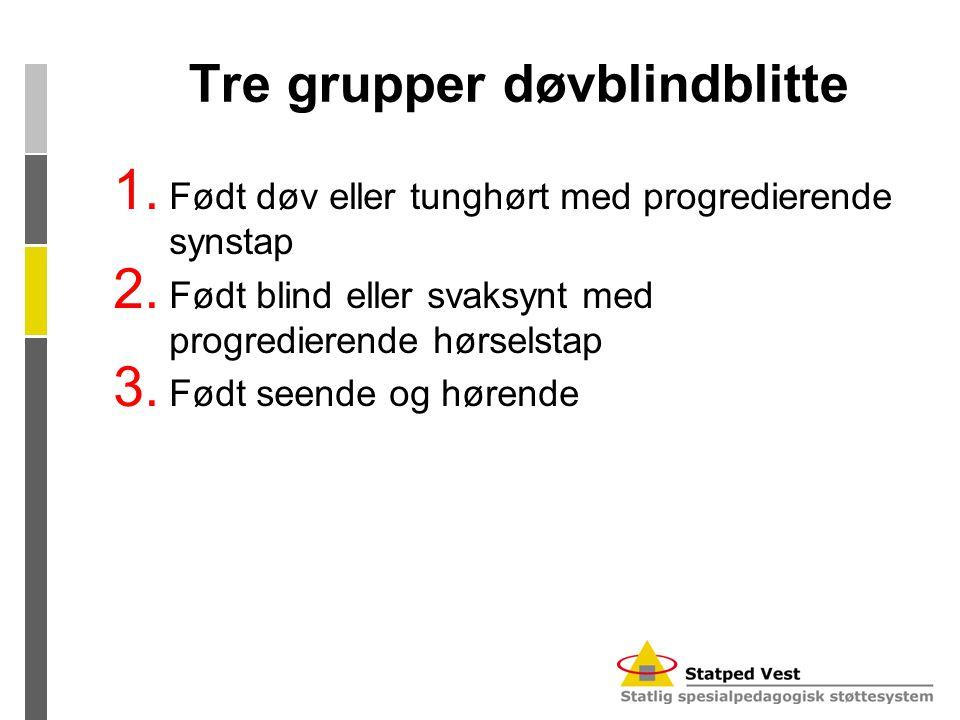 Tre grupper døvblindblitte