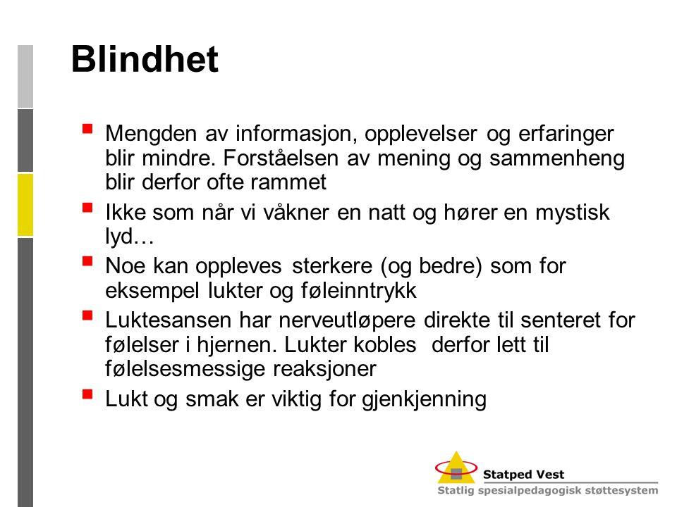 Blindhet Mengden av informasjon, opplevelser og erfaringer blir mindre. Forståelsen av mening og sammenheng blir derfor ofte rammet.