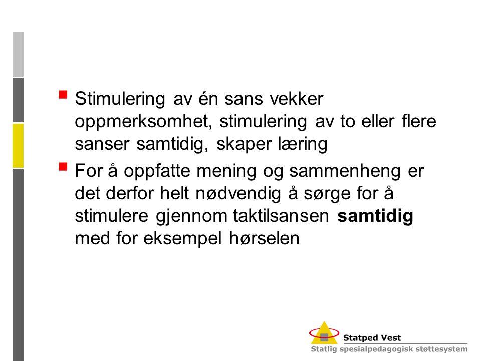 Stimulering av én sans vekker oppmerksomhet, stimulering av to eller flere sanser samtidig, skaper læring