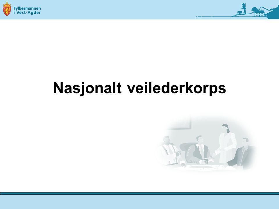 Nasjonalt veilederkorps