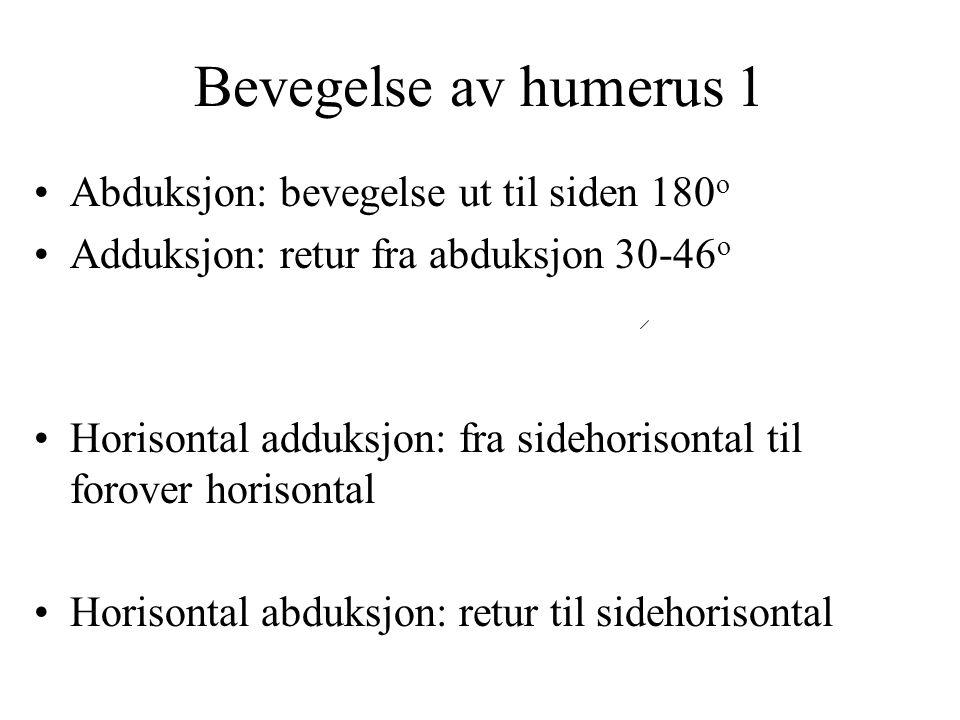 Bevegelse av humerus 1 Abduksjon: bevegelse ut til siden 180o