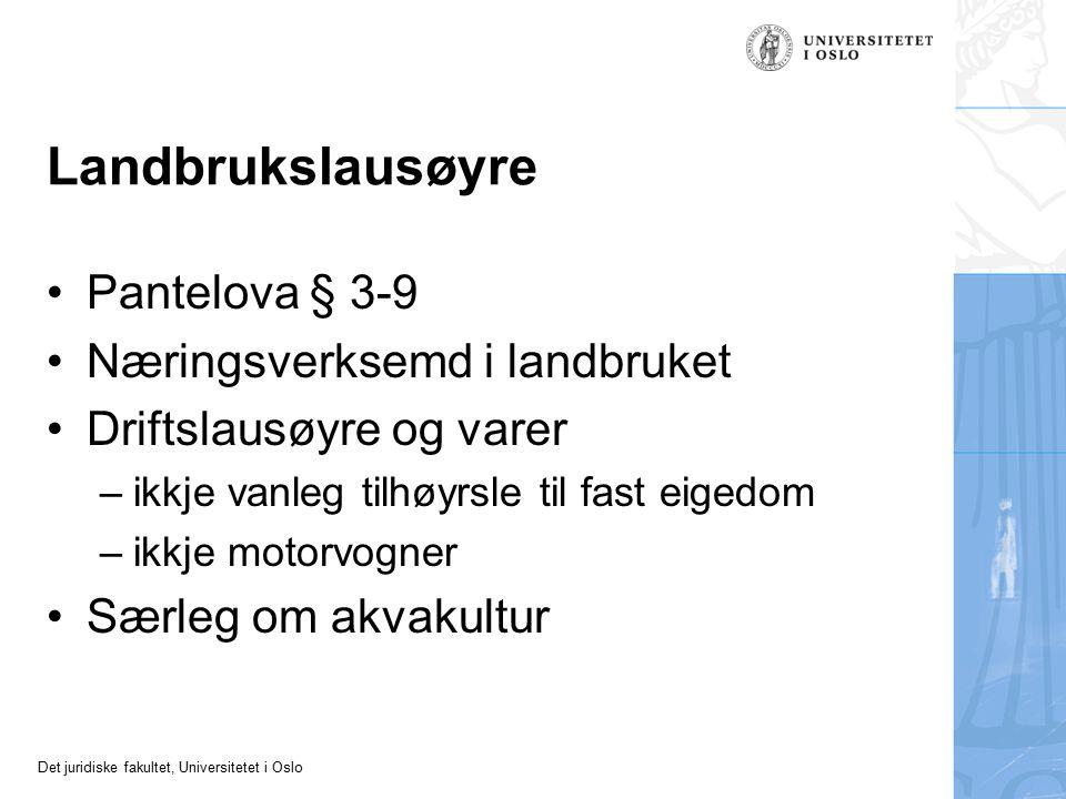 Landbrukslausøyre Pantelova § 3-9 Næringsverksemd i landbruket
